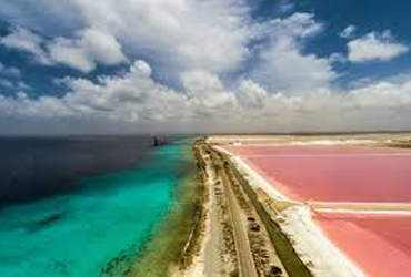 Pink Waters South Bonaire